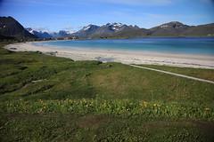Ramberg, Lofoten Islands, Norway (haroldmoses) Tags: norway constellation lofotenislands celebrityconstellation ramberg