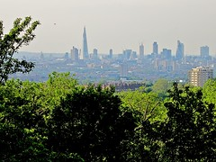 London from One Tree Hill (Andy Worthington) Tags: trees london hills stpaulscathedral shard gherkin onetreehill honoroak se23 guyshospital andyworthington theshard