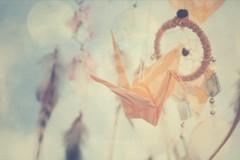 Day 246/366 - Crane (MPhotography.) Tags: 50mm origami bokeh pastel canon450d beyondbokeh