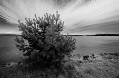 Vnertall-1 (miffo2008) Tags: bw water clouds blackwhite nikon sweden karlstad sverige vatten vnern vrmland svartvitt d7000 rsholmen