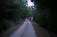 avanti. (piermario) Tags: sardegna morning people up ahead 50mm sardinia gente path walk things contax lives sentiero vite cose mattina camminare avanti sopra 139quartz berchidda limbara