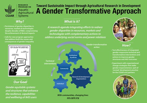 A gender transformative approach. Design by Beth Timmers, 2012.
