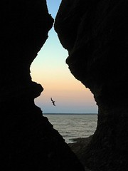 opening in the rocks (Mr.  Mark) Tags: ocean deleteme5 light sunset shadow deleteme8 deleteme deleteme2 deleteme3 deleteme4 deleteme6 bird deleteme9 deleteme7 beach silhouette landscape photo stock landmark newbrunswick flowerpot bayoffundy provincialpark hopewellrocks highesttidesintheworld flickrchallengegroup flickrchallengewinner markboucher