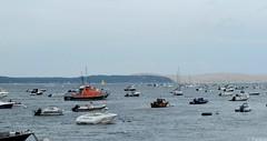 Embouteillage sur le bassin d'Arcachon (Mystycat =^..^=) Tags: bassindarcachon aquitaine france gironde bateaux voiliers dune pyla lavigne