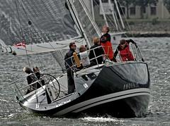 """Phoenix"" Luffe 48 (winchman2010) Tags: sailing segeln regatta yachts boats kiel baltic ostsee welcomerace"