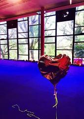 Sobre o amor. (Expulso de Parasos) Tags: arte balo amor corao