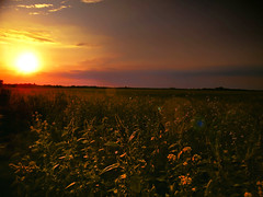 Sunset (Banga Attila) Tags: sun set sunset nature outdoor sony cloud meadow colors lens