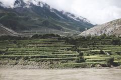 IMG_0076 (chungkwan) Tags: shigatse tibet canon sigma photography travel world nature