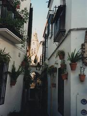 1997 Spain // Wandern in Andalusien // Cordoba (maerzbecher-Deutschland zu Fuss) Tags: 1997 andalusien andalucia spain spanien españa wandern natur trail wanderweg maerzbecher hiking trekking cordoba