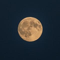 Full Harvest Moon (R3D_Photography) Tags: barleymoon fingerlakes fullcornmoon harvestmoon ny newyork r3dphotography raysheleyiii full moon