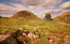 Sycamore Gap (Andy Watson1) Tags: sycamore gap hadrians wall hadrianswall northumbria northumerland england english uk united kingdom great britain british long exposure rocks tree clouds sky blue historic landscape view scenery scenic countryside light grass hills canon 70d sigma travel trip
