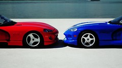 Viper VS Viper  (obscure.atmosphere) Tags: deutschland germany hamburg sommer summer verano ete   modellauto    car spielzeug   toy toys 118 juguetes modelo jouets dodge chrysler viper srt us usa american muscle auto automobile supercar sportcar hypercar   exotic automobil sportwagen coche carro automovil deportivo voiture sport sonnenschein sonnenlicht licht light ligero lumiere   sunlight sunshine sun sonne   sunny sonnig design snake schlange diecast modele model modell rt 10 gts beach strand