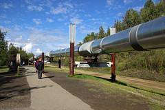 the pipeline (scott1346) Tags: oil pumping pipeline prudoebay valdez verylong aboveground crudeoil energy transportation resource tourstop 1001nights