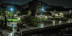 2198  Noche de lluvia (Ricard Gabarrs) Tags: agua lluvia water noche nocturna plaza calle arbol arboles luz ricardgabarrus ciudad villa parque jardin olympus ricgaba