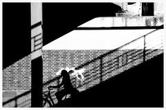 shadow. stairs. (2) (HansEckart) Tags: stairs schatten urban city street bike streetfotografie geometrie bw blackandwhite schwarzweis
