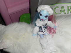 Abbey Bominable and the yeti cat ~ SAM2996_MonsterHigh_Abbey_ (applecandy spica) Tags: pink blue white abbey cat fur furry kitten chat doll soft purple kitty fluffy katze fatcat chubby yeti weiss gatto bianco blanc sparkling kittie ktzchen micio chaton gattino weis soffice peloso morbido gattone micetto micione gattochiatto monsterhigh abbeybominable