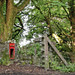 Abandoned Pontsticill Post box