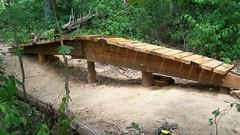 ladder bridge profile (Idiolector) Tags: ttf mountainbikepark wapehani technicaltrailfeature
