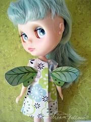 bluegreen butterfly