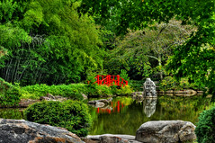 Japenese Garden (the waterfallhunter) Tags: bamboo botanicalgardens hdr mountainbrook redbridge birminghambotanicalgardens japenesegarden asiangarden birminghamalabama jeffersoncounty alabamathebeautiful