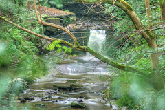 Day 201 - Babbling brook (Ben936) Tags: trees green water rain river waterfall stream brook hdr babblingbrook