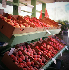 fresh picked (after october) Tags: summer film fruit oregon mediumformat bokeh peach august pacificnorthwest peaches fruitstand fruitloop hoodriver nectarines stonefruit hasselblad500cm drapergirlscountryfarm