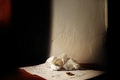 Dear Cathrine - Get Pushed!! Round 25 (Tinina67) Tags: life bw woman colour love writing still women sad tissue story letter tina push sw comfort drama challenge zone cathrine getpushed tinina67