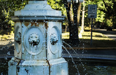 Nikon D100 - Neighborhood of Fountains (Brandon Chitwood. Photography) Tags: street city trees summer usa sun white mist art water fountain sign stone nikon near indianapolis united side roundabout indy indiana spray historic east neighborhood daytime states d100 nikkor curb in hoosier naptown