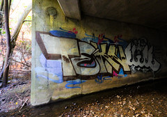 Tekn (You can call me Sir.) Tags: california graffiti bay north elite bayarea northern tekn nswp