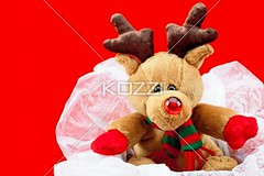 teddy bear in a gift box against red background (ericphotos8877) Tags: winter decoration colorimage indoors nobody shiny fluffy holiday anniversary gift studioshot celebration event fragility birthday present decor cute photography display manmadeobject religious christmas xmas sweet vacation thorn december traditionalculture displaying teddybear festive stuffed toy wrappingpaper surprise christmasgift bear occasion doll stuffedtoy nopeople displayed animallikeness manmade packed publiccelebratoryevents softtoy toyanimal christmaspresent religiouscelebration redbackground giftbox christmasgiftbox