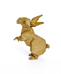 Rabbit (Koh) (cavemanboon*) Tags: rabbit singapore origami malaysia paperfolding    ronaldkoh cavemanboon