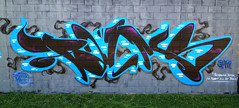 Black'n'Blue (Dirty Harry Palms GM) Tags: art palms graffiti gm brisbane crew graffitti burners