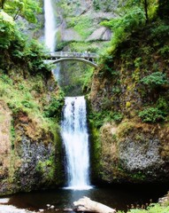 Multnomah Falls II (THE_DUDE771) Tags: road city trees lake signs mountains west fall sports water grass saint bike basketball sport statue rock wall bar oregon forest umbrella plane river menu square portland michael town bacon moss maple pond view adams pacific market steel interior north salt bridges tunnel falls nike jordan mount donuts rainier helens hood pioneer quarry voodoo staurday soughnuts