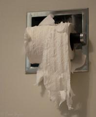 CSI - the case of the shredded toilet paper (Cats 99) Tags: paper toilet september alberta shredded fairview 2012 whodidit agruesomescene probablysmokeyorcc
