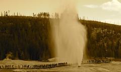 Beehive Geyser erupting, Yellowstone National Park, Wyoming (Dr. Doc) Tags: yellowstonenationalpark wyoming geyser beehive