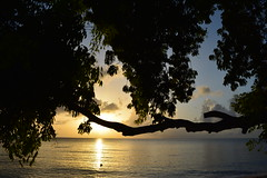 DSC_0395 copy (iKoriJoseph) Tags: vacation barbados beach beautiful colour concept clothing korina joseph photography canada sun summer sunset sunrise sunglasses water boat house villa
