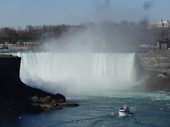 Niagara Falls.  Maid in the Mist tourist boat goging towards the Horseshoe Falls.  Seagulls on the rocks. (denisbin) Tags: niagarafalls caveofwinds walkway amerianfalls seagulls horseshoefalls