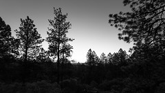New Mexico in Monochrome (ken.krach (kjkmep)) Tags: newmexico