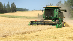 CombineAug2009NearSsideGPEIBLS_6847x_AGR (Government of Prince Edward Island) Tags: combine grain cereals johndeere harvesting harvest