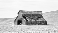 A Broken Parable (John Westrock) Tags: lamont washington barn blackandwhite abandoned pacificnorthwest rural farm field canoneos5dmarkiii canon135mmf2lusm