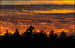 Fire in the Sky - Sunset over Montague Harbor (lironsnaturephotography.com) Tags: wildlifephotography sunset sunsets evening sky clouds forest dusk scenery landscapes landscape scenic view nature natural naturephotography canada bc britishcolumbia gulfislands southerngulfislands montagueharbor galiano galianoisland lironsnaturephotographycom canon canon7dmarkii 7dmarkii canoneos7dmarkii 400mm canonef400mmf56lusm