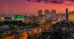 Skyline by night (left)! #USA at #LasVegas #MetEenHuurautoZieJeMeer @Sunnycars_NL #rentasmile #sunnycars #travel @sunny_cars_autoverhuur Check the site in bio for more stories. ------------------------------------------- #NatGeoTravel #lp #exp (christravelblog) Tags: skyline by night left usa lasvegas meteenhuurautoziejemeer sunnycarsnl rentasmile sunnycars travel sunnycarsautoverhuur check site in bio for more stories natgeotravel lp expediapic rtw tripnatics lovetheworld traveller igtravelers travelling beautifuldestinations traveldeeper writetotravel bucketlist huffpostgram postcardsfromtheworld travelphotography travelblogger igtravel travelstoke wanderlust instatravel photography travelgram travelingram follow me visit website wwwchristravelblogcom feel free share photos but do credit them contact cooperate