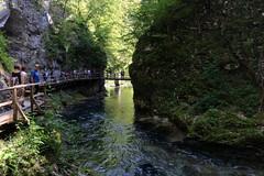 51. Gole  di Vintgar (redbaron22) Tags: gole fiumi mototour slovenia