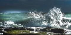 Sea and nature - Ambleteuse - France (belzebello) Tags: beach sky paysage colors luminosity nature lumiere plage mer nord green france sun luminosite landscape amazing sea stones beautiful beaches sand light marin stone marine vert sony