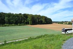 Towards Mametz Wood. (greentool2002) Tags: