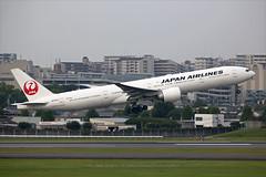 "Boeing, 777-346(ER), JA737J, ""JAL"", RJOO, Osaka Itami, Japan (Daryl Chapman Photography) Tags: ja737j jl jal boeing 777 77w 777346er departure takeoff 32l canon 5d mkiii is ii 70200l f28 plane planes aviation planespotting arrival flight commercialaviation civilaviation great fly flying sky dslr hongkongspotters aviationnut daryl chapman japan osaka itami itm rjoo ahkgap osakainternationalairport 36126 668"