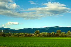 Doglodi (Isko78) Tags: nikon nature natur natura colors clouds green trava trees priroda d80 digital helios 58mm