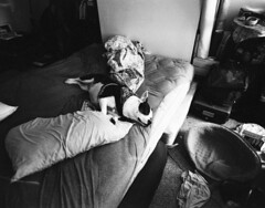 Lazy (Hogarth Ferguson) Tags: blackandwhite dog mamiya film diy bed pit bull pitbull lazy hp5 sleeps ilford hp5plus mamiya7 resuce ilfotecddx 43mm pibble mamiyau7