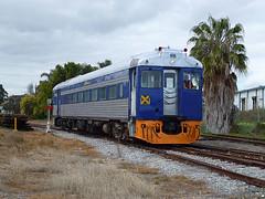 National Railway Museum - Kestrel (Bingley Hall) Tags: museum train diesel south rail railway australia railcar national adelaide bluebird kestrel 257 broadgauge