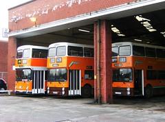 Atlantean line-up, Wigan depot (Barang Shkoot) Tags: bus depot gmb trio preserved standard leyland psv wigan gmt atlantean melverley 8622 8758 8763 ncme